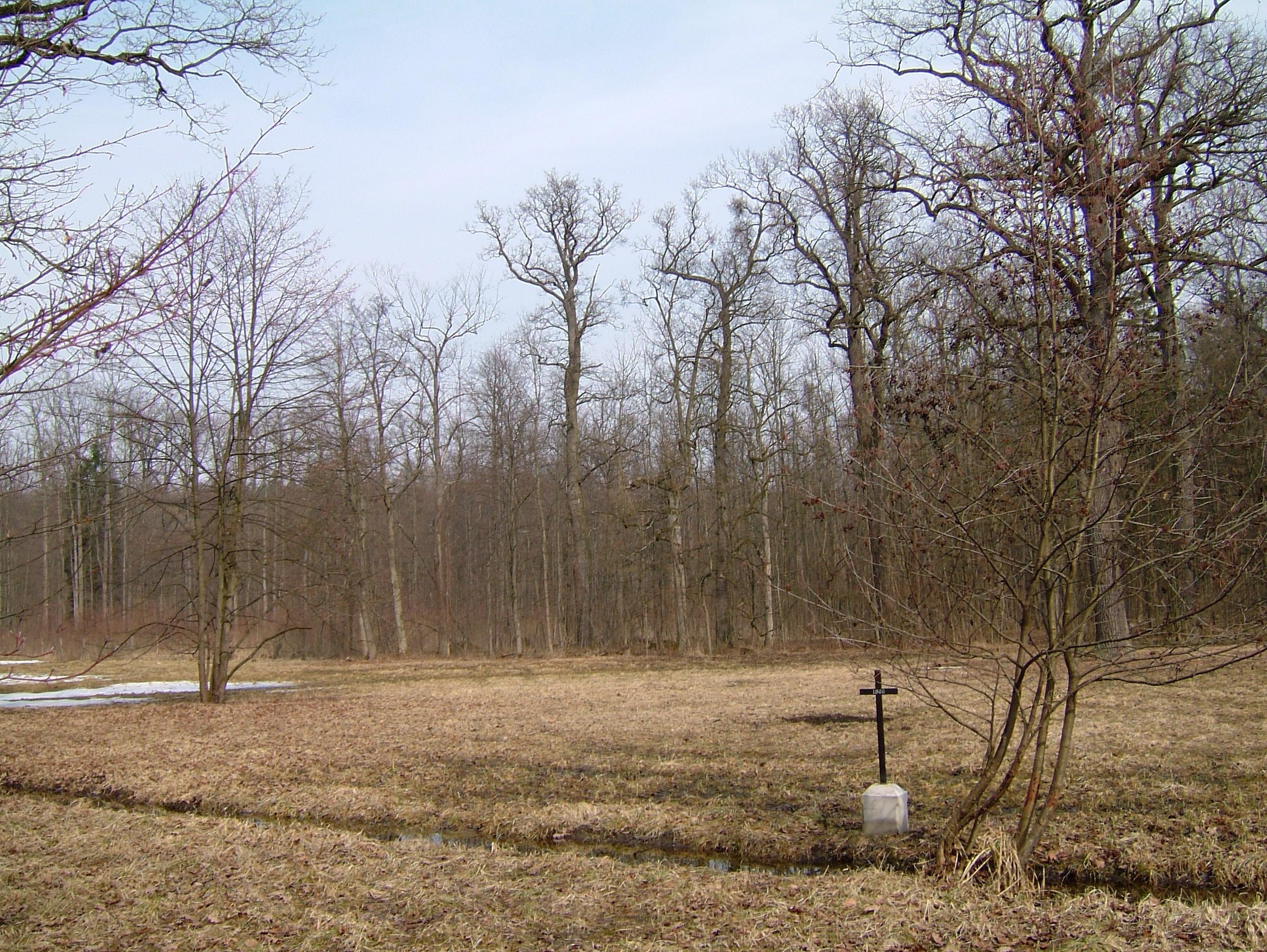 Typový kříž na hromadném hrobě